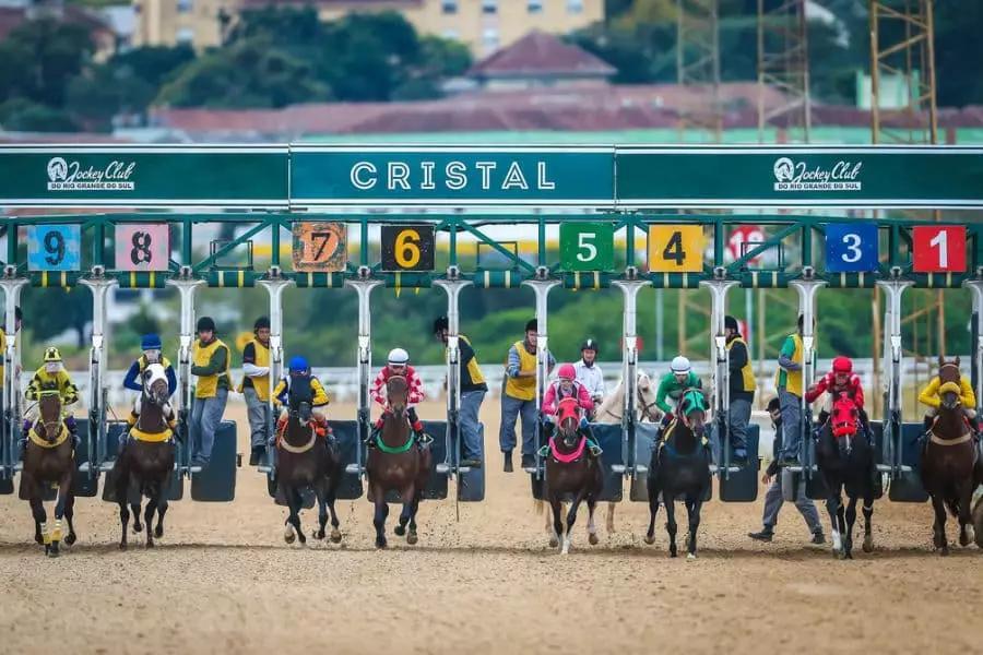 lei de apostas e corridas de cavalos